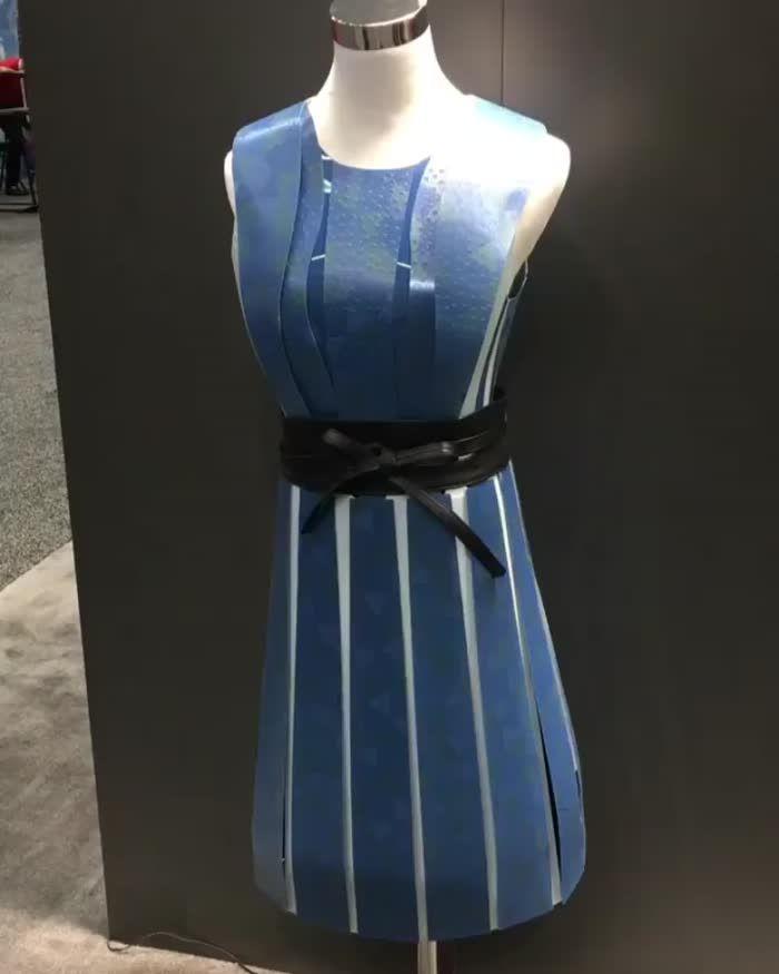 E-Ink Dress (E-Ink)