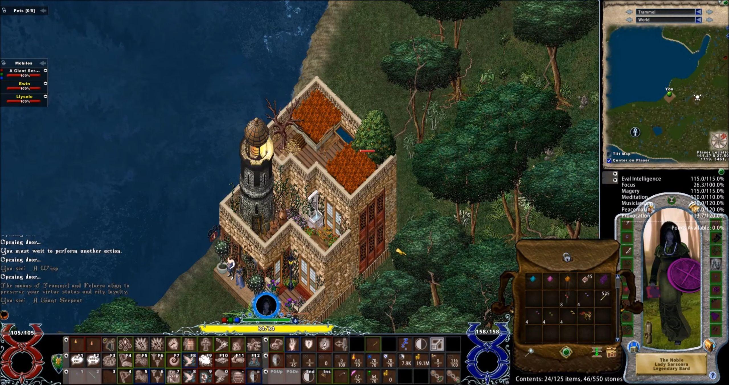 La plupart des joueurs chevronnés d'Ultima Online remplacent l'interface de base par une autre plus humaine, ici Pinco's UI.